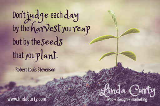 Small Business Inspiration: Don't judge each day by the harvest you reap buy by the seeds that you plant.